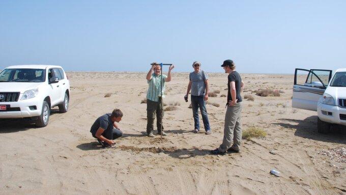 Bei der Probennahme im Oman (von links): Christoph Grützner (Universität Jena); Benjamin Koster, Klaus Reicherter und Sascha Schneiderwind (alle Universität Aachen).